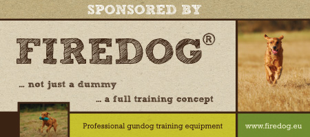 firedog sponsored banner en 450 200px